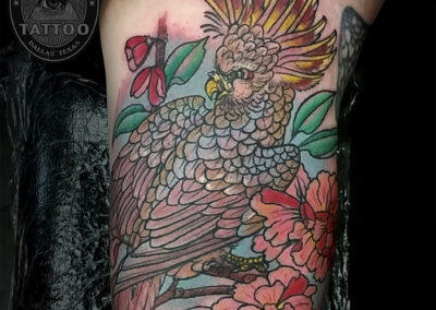 dallas-traditional-tattoo-parrot-peonies
